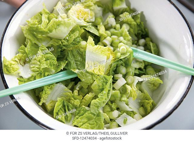 Cos lettuce with spring onions
