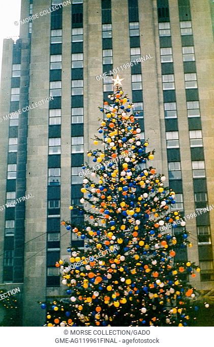 View of the Rockefeller Center Christmas tree fully adorned in colored globe lights and a 5-pointed star, in Rockefeller Center Plaza, midtown Manhattan