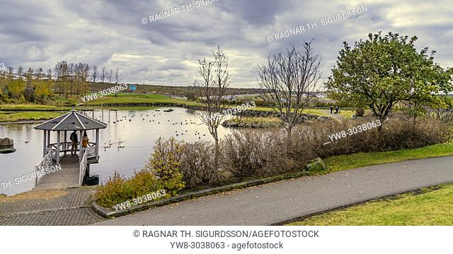 Kopavogur Pond in the autumn, a suburb of Reykjavik, Iceland