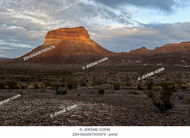 Desert landscape with butte, Big Bend National Park, Texas, USA