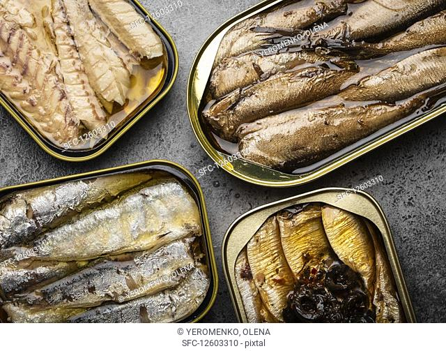 Assorted canned fish in a tin