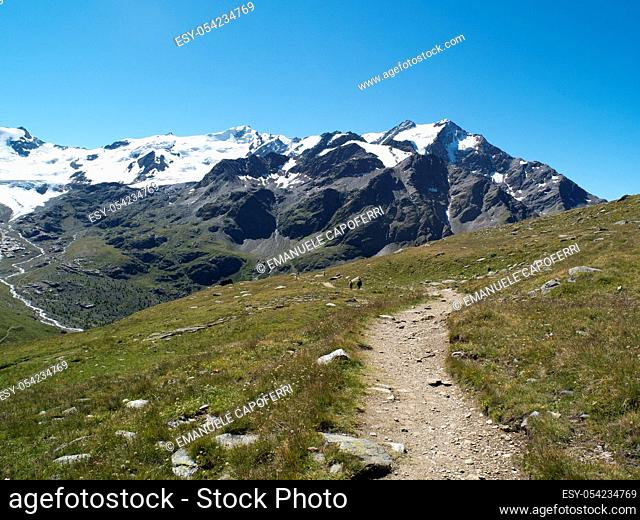 Path leading to the shelter Pizzini, beneath Mount GranZebrù, Valtellina, Stelvio National Park, Italy