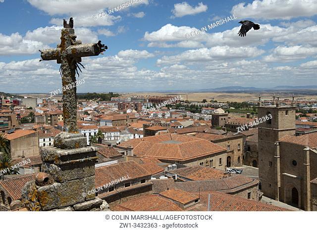 Crow flying towards crucifix from tower, San Francisco Javier Church, Plaza de San Jorge, Cáceres, Extremadura, Spain, Europe
