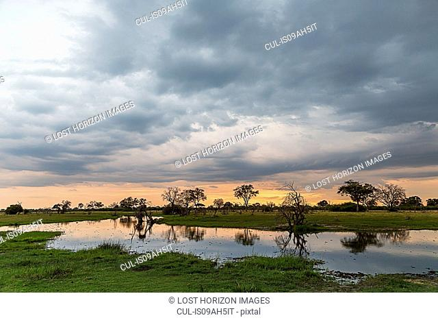 Silhouetted trees and swamp, Okavango Delta, Chobe National Park, Botswana, Africa