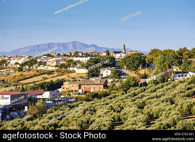 Panoramic overview of Baeza, UNESCO World Heritage Site. Jaen province, Andalusia, Southern Spain Europe