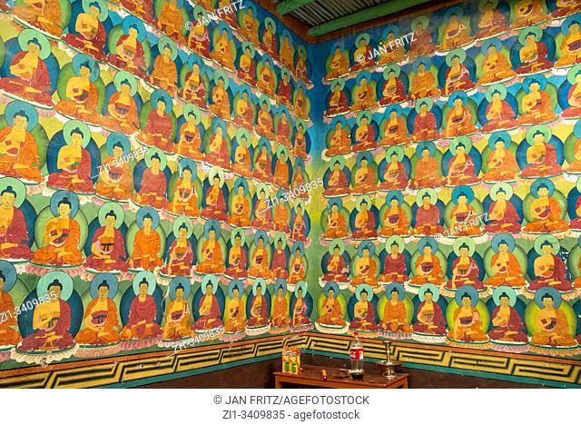 murals at Chemday monastery in Ladakh, India
