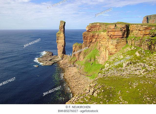 sea stack Old Man of Hoy, United Kingdom, Scotland, Orkney, Hoy