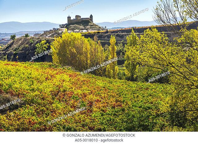 Vineyards in Autumn. In the background, San Vicente de la Sonsierra village. La Rioja. Spain