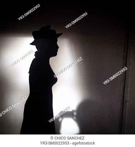 The silhouette of a photographer taking a picture of the silhouette of a woman is displayed in Mexico City, Mexico