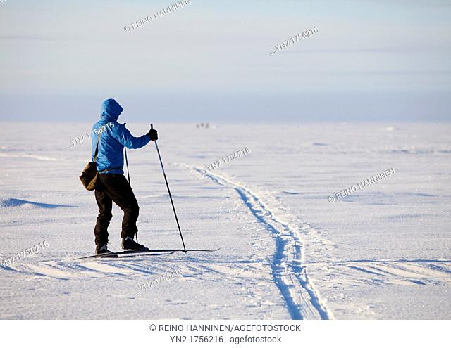 Cross-country skier on sea ice  Location Nallikari Gulf of Bothnia Bothnian Bay Baltic Sea Oulu Finland Scandinavia Europe