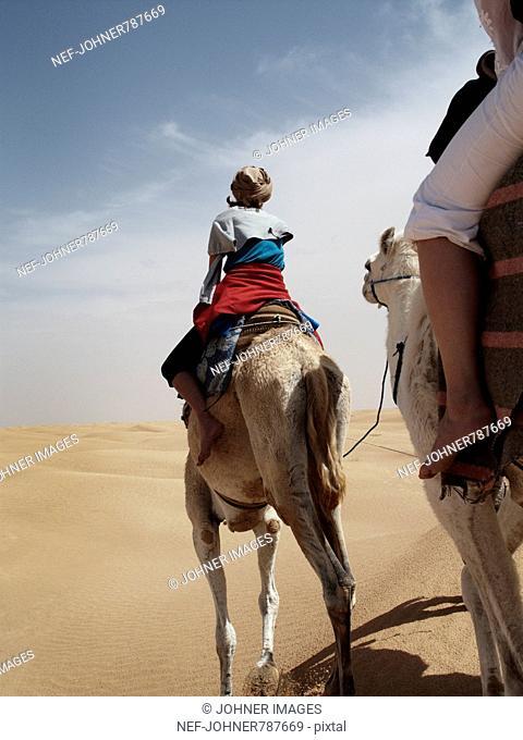 People riding dromedaries in the desert, Tunisia