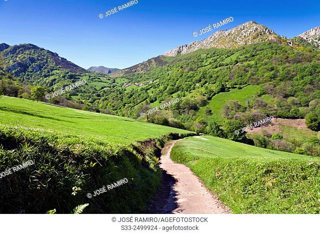 Xanas' road in Pedroveya. Asturias. Spain