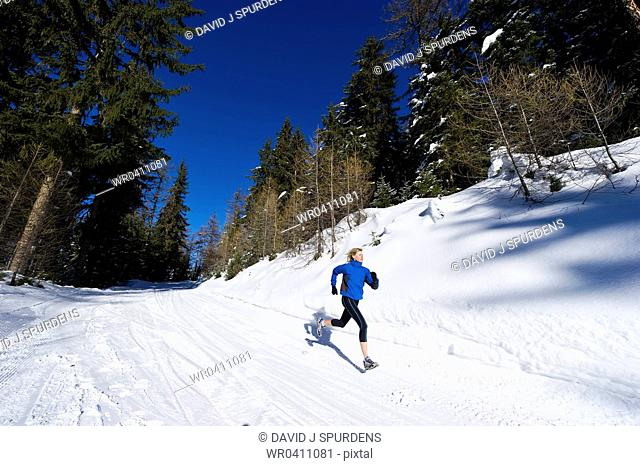 A jogger runs through an alpine forest