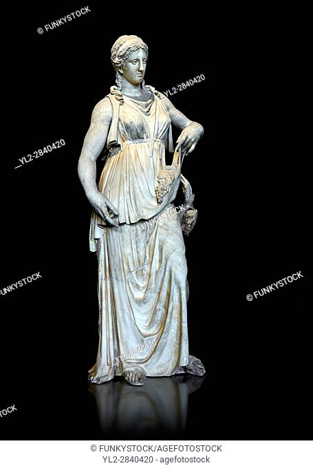Bacchante or Ariadne, a Roman marble statue of circa 150 - 200 AD. The bunch of grapes wrapped in the folds of her garment suggest that the statue depicts...