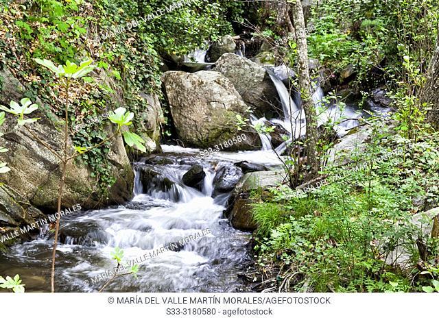 Pajarero stream in the Sierra de Gredos. Avila. Spain
