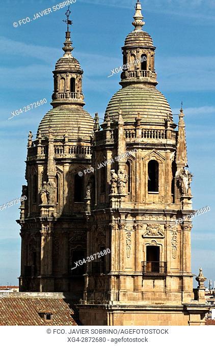Torres de la Clerecía. Salamanca. Castilla-León. España. Europa