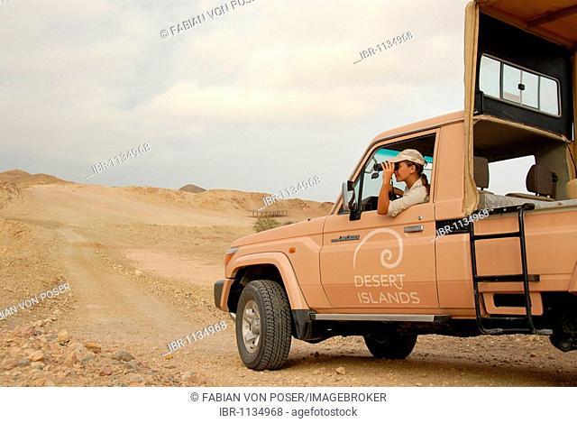 Ranger watching animals, Sir Bani Yas Island, Abu Dhabi, United Arab Emirates, Arabia, Near East, Orient