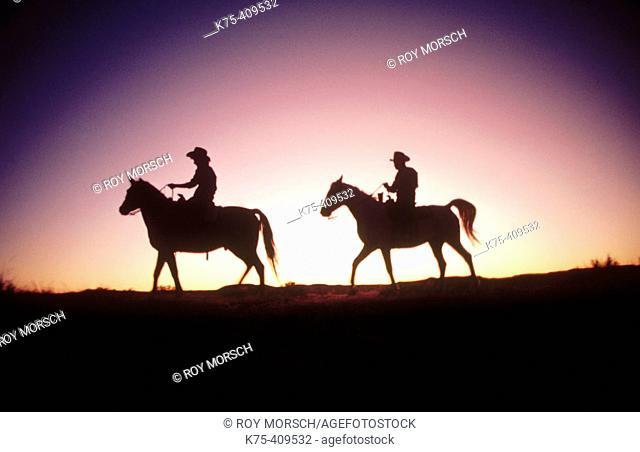 Rancher couple on horseback