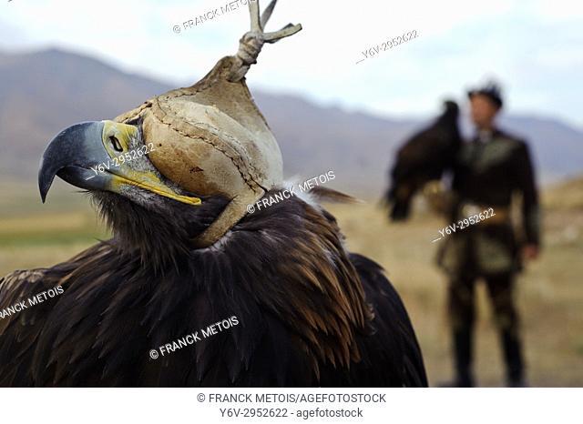 Eagle hunter ( Kyrgyzstan)