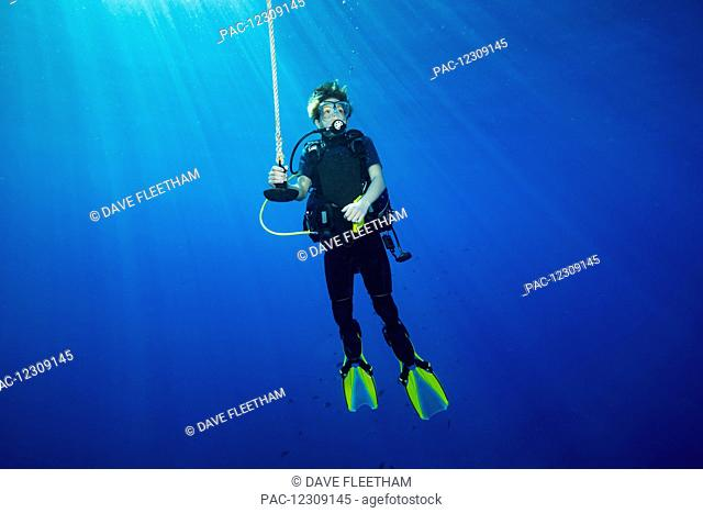 A diver hanging on a line at 15 feet for a decompression stop before surfacing; Hawaii, United States of America