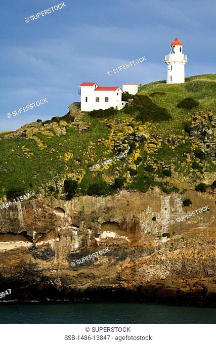 Lighthouse on the coast, Taiaroa Head Lighthouse, Taiaroa Head, Dunedin, Otago Peninsula, South Island, New Zealand