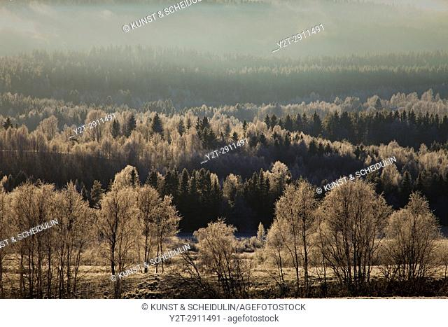 Frost covered forests and meadows under a cloudy sky in Anundsjoe, Sweden