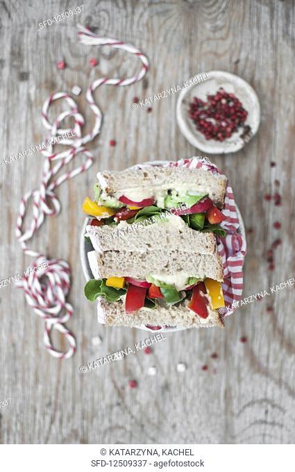 Vegan sandwiches filled with hummus and veggies (bell pepper, radish, avocado)