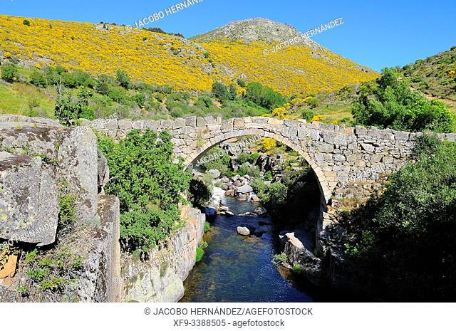 Bridge over the Barbellido river in the Pozo de las Paredes. Gredos mountains. Navacepeda de Tormes. Avila province. Castilla y Leon. Spain