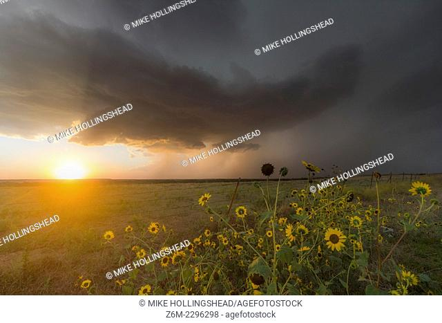 Severe supercell storm drops southeast in northern Kansas as the setting sun shines underneath