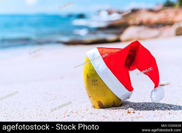 Close up of coconut wearing santa hat on tropical sandy beach with ocean waves rolling against rocky coastline in blurred background
