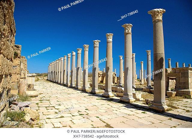 Ancient Columns, Leptis Magna, Libya, North Africa