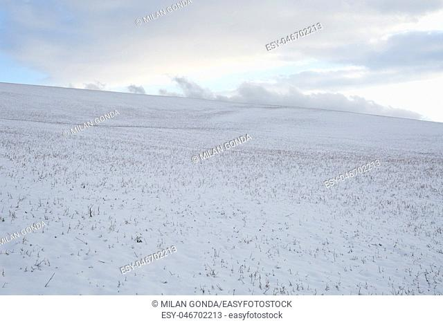 Winter fields of northern Slovakia.