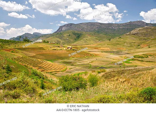 Landscape of rice paddies in the environs of Andringitra National Park in southern Madagascar