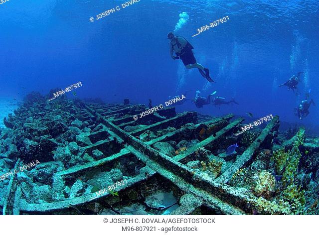 The Sugar wreck, Great Bahama Bank, Bahamas Islands