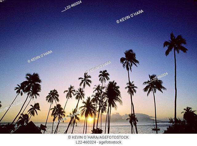 Sunset at Punaauia Lagoon. Tahiti Island. the Society Islands. French Polynesia. Pacific