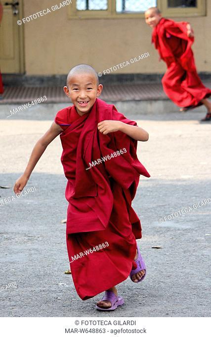 NEPAL Bodhnath. Un giovanissimo monaco tibetano, all'interno del suo monastero, maggio 2009,,Copyright © Fototeca Gilardi