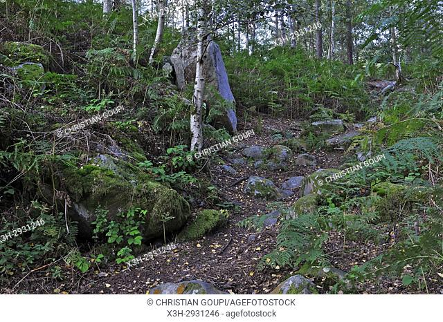 Rochers d'Angennes site in the Forest of Rambouillet, Haute Vallee de Chevreuse Regional Natural Park, Yvelines department, Ile-de-France region, France, Europe