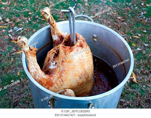 Deep Fat Fried Turkey