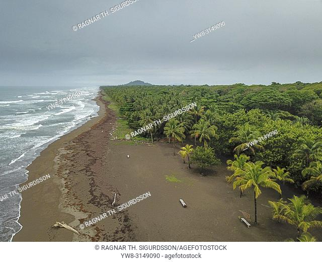 Beach, Tortuguero National Park, Costa Rica
