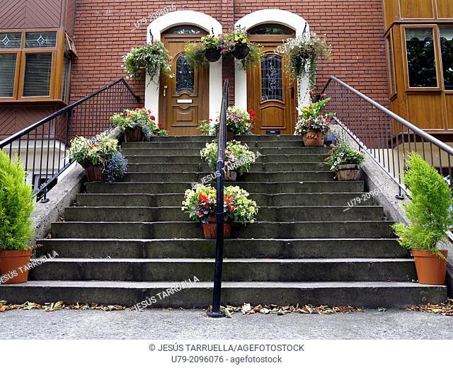 Door. Dublin. Ireland