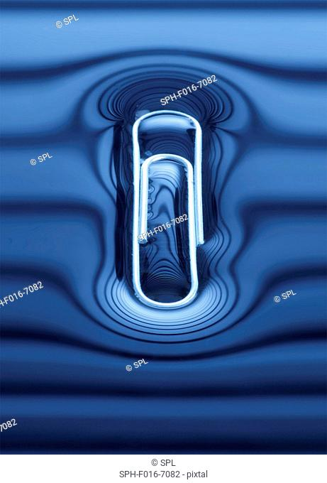 Paperclip floating on the water surface