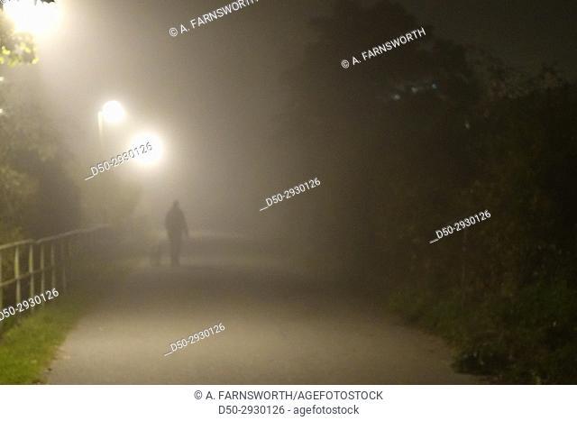 STOCKHOLM, SWEDEN Noir. Fog. Alone. Walking dog