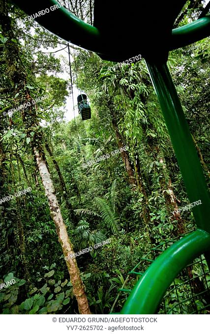 Sky walk through the canopy. Braulio Carrillo, Costa Rica, Central America