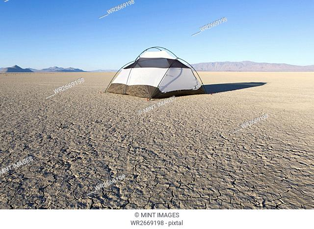 Camping tent on vast playa, Black Rock Desert, Nevada