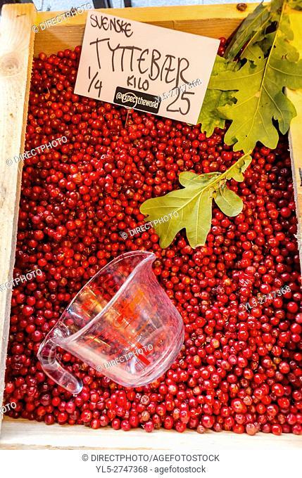 Copenhagen, Denmark, Detail, Red Berries on Sale in Torvfhallerne Food Market