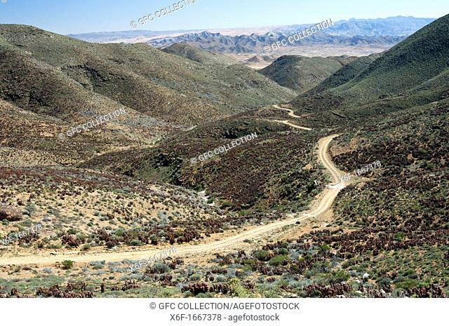 Arid valley with desert road in a Karoo landscape at the Helskloof Pass, Richtersveld National Park, Namaqualand, Northern Cape Province, South Africa