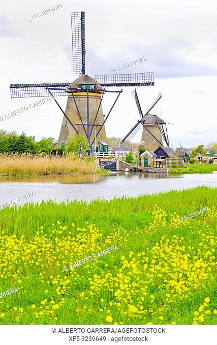 Kinderdijk, Traditional Dutch Windmills Pumping Water, UNESCO World Heritage, Holland, Netherlands, Europe