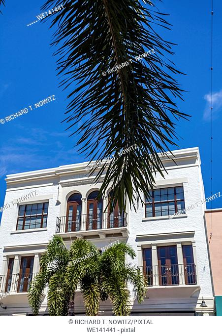 West Pam Beach architecture and palm tree