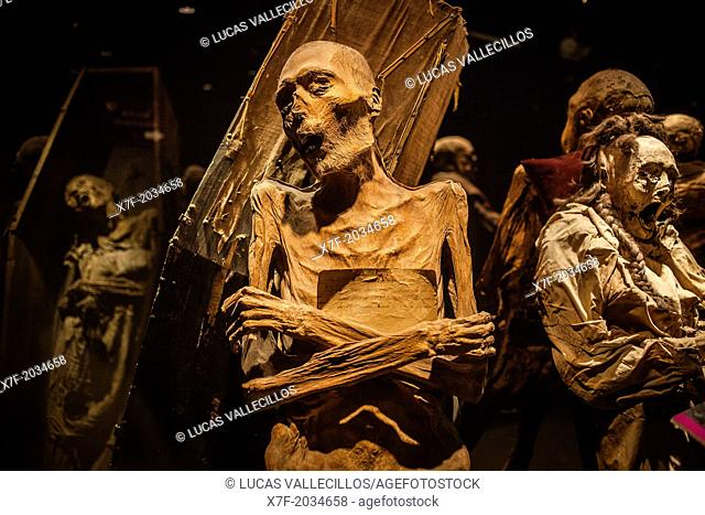 Museum of the Mummies, Guanajuato, state Guanajuato, Mexico