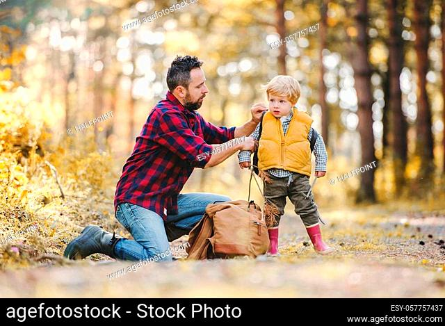 A mature father putting a backpack on a toddler son on a road in an autumn forest